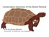 Conservation Genomics of the Desert Tortoise